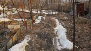 Под таким укрытием зимовали виноградные кусты
